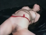 Asian Bound Banged And Creampied Thumbnail