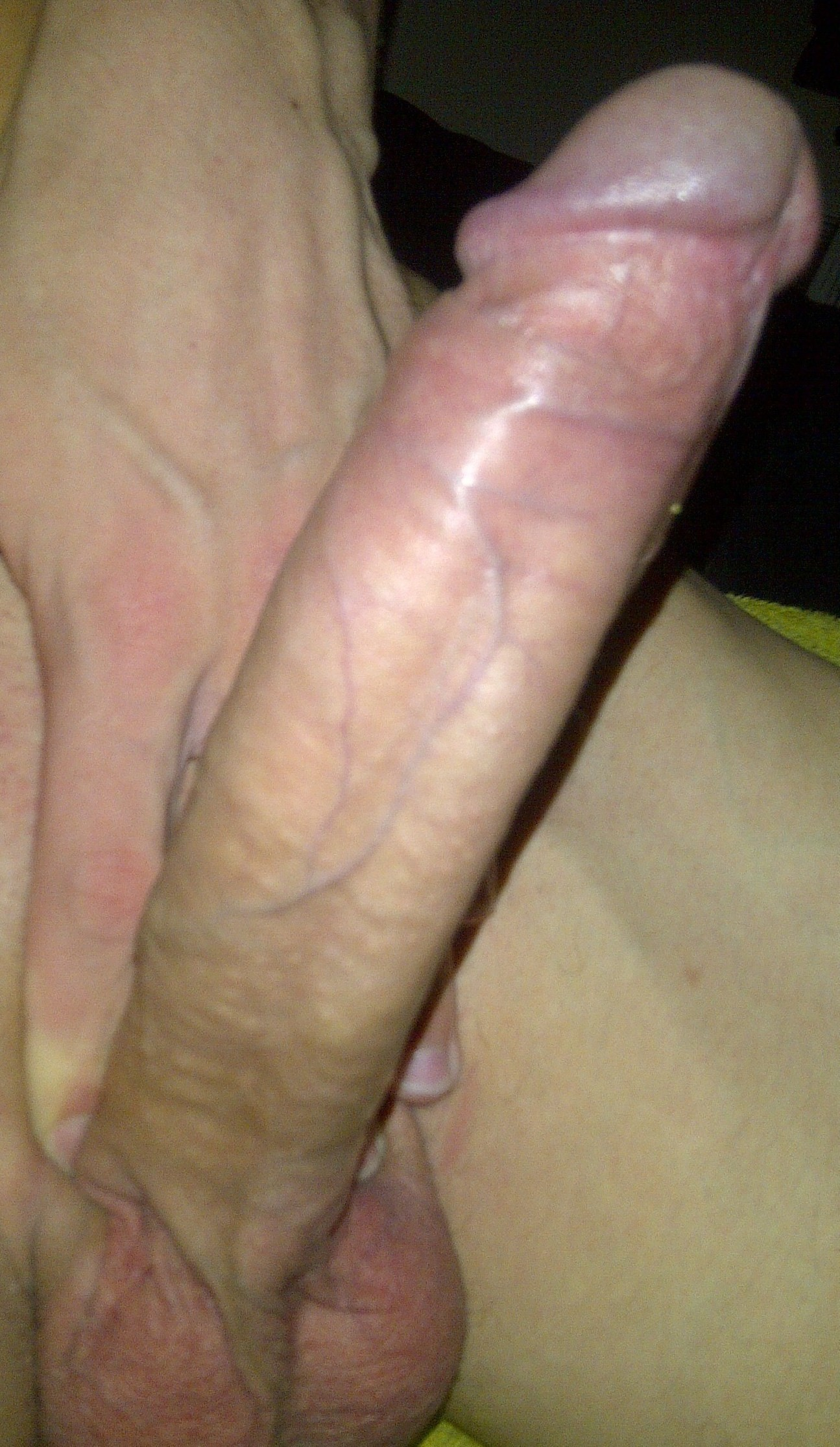 Search for big dicks